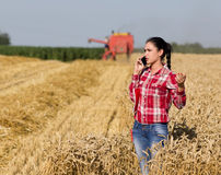Pretty woman talking on mobile phone in wheat field Royalty Free Stock Image