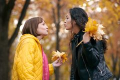 Pretty woman and teen girl are posing with bunch of maple`s leaves in autumn park. They are training for kiss. Beautiful landscap royalty free stock photos