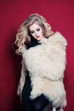 Pretty Woman Wearing Fashion Fur Coat stock images