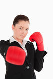 Pretty woman wearing some boxing gloves Royalty Free Stock Photos