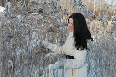 Pretty woman in winter park Royalty Free Stock Image