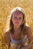 Pretty womans portrait. In wheat field Royalty Free Stock Images