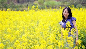 Pretty women. A pretty women in rape flowers Stock Images