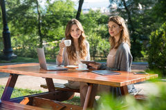 Pretty women sitting outdoors in park drinking coffee using laptop Royalty Free Stock Images