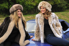 Pretty women wearing winter fur coats Royalty Free Stock Images