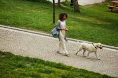 Pretty young lady walking with dog in park in the morning Royalty Free Stock Image