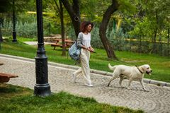 Pretty young lady walking with dog in park in the morning. Pretty young african lady in white clothes walking with dog labrador in park in the morning Royalty Free Stock Photography