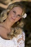 Pretty young blond bride Stock Photo
