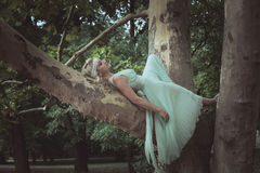 Pretty young woman in romantic dress lie  on tree summer day Stock Photos