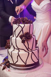 Pretty young bride and groom cut the wedding cake Stock Image