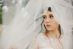 Pretty young bride looks away being hidden under a veil Stock Image