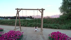 A pretty young brunette woman in a white summer dress on a swing near a tulip field at sunset. stock video