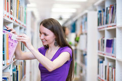 Pretty, young college student in a library Stock Image