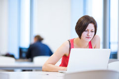 Pretty, young college student studying in the library Royalty Free Stock Photography