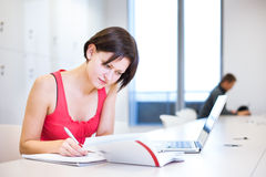 Pretty, young college student studying in the library Royalty Free Stock Photos