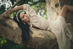 Pretty young dark hair  woman in romantic dress lie  on tree in Stock Photography