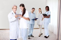 Pretty young doctors looking at a file Royalty Free Stock Photos