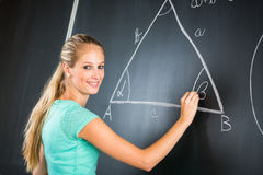 Pretty young elementary school/college teacher Royalty Free Stock Photo