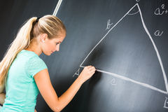 Pretty young elementary school/college teacher Royalty Free Stock Photography