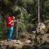 Pretty, young female hiker walking through a splendid old pine forest stock photo