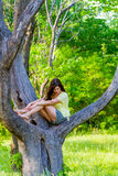 Pretty Young Girl Climbing Tree Royalty Free Stock Images