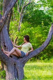 Pretty Young Girl Climbing Tree Royalty Free Stock Photo