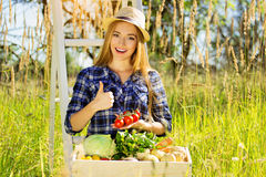 Pretty and young girl in hat, with wooden box full of vegetables and keeping tomatoes in her hands. Summer harvest. Stock Images