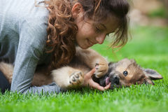 Pretty young girl plays with a puppy Royalty Free Stock Photos