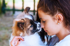 Pretty young girl with a puppy Stock Photo