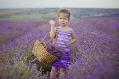 Pretty young girl sitting in lavender field in nice hat boater with purple flower on it. Stock Photos