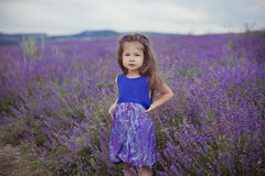Pretty young girl sitting in lavender field in nice hat boater with purple flower on it. Stock Image