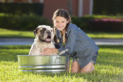 Pretty Young Girl Washing Her Pet Dog In A Tub Stock Photography