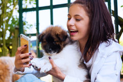 Pretty Young Girl With A Puppy Royalty Free Stock Photography