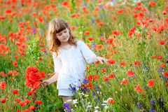 Pretty young lady in a field of wild flowers. The pretty young lady in a field of wild flowers royalty free stock photo