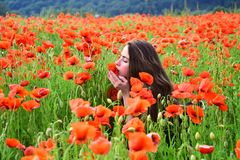 Pretty young lady sitting amongst poppies stock photo