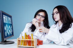 Pretty young scientists working in the lab Stock Photos