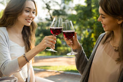 Pretty young two women sitting outdoors in park drinking wine. Picture of pretty young two women sitting outdoors in park drinking wine. Looking aside Royalty Free Stock Image