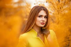 Woman in an autumn forest. Pretty young woman in an autumn forest royalty free stock photos