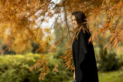 Pretty young woman in the autumn park Stock Photography