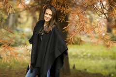 Pretty young woman in the autumn park Royalty Free Stock Image