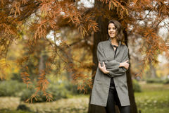 Pretty young woman in the autumn park Royalty Free Stock Photos