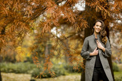 Pretty young woman in autumn park Stock Photos