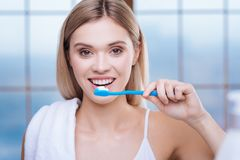 Pretty young woman brushing her teeth in the morning. Love cleanliness. Gorgeous young woman brushing her teeth in the morning and smiling while wearing a white Stock Image