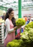 Pretty young woman buying vegetables on market Royalty Free Stock Photo
