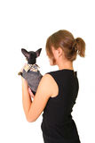 Pretty young woman with chihuahua isolated on white background Royalty Free Stock Image