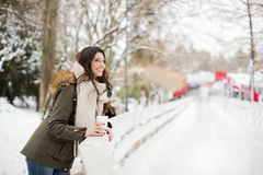 Pretty young woman drinking hot tea on a winter day Stock Images