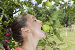 Pretty young woman eating organic apples from an apple tree Royalty Free Stock Photos