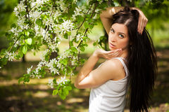 Pretty young woman in a green park. summer Royalty Free Stock Photography