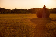 Pretty young woman in hat standing near hay bale Royalty Free Stock Photography
