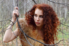 Pretty young woman keeps tree branch and looks away Royalty Free Stock Photo